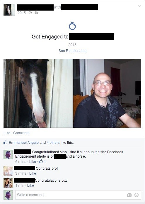 whoops wedding engagement horse - 8443447552
