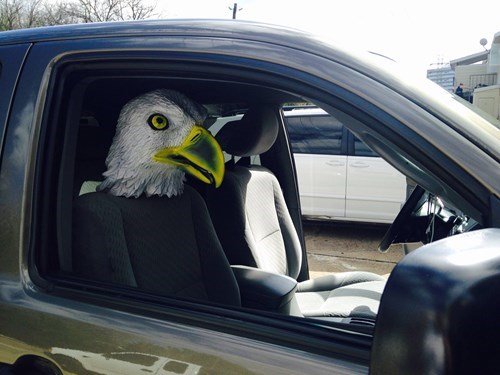 a-seat-cover-for-your-co-pilot