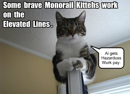 monorail cat Cats dangerous - 8443898368