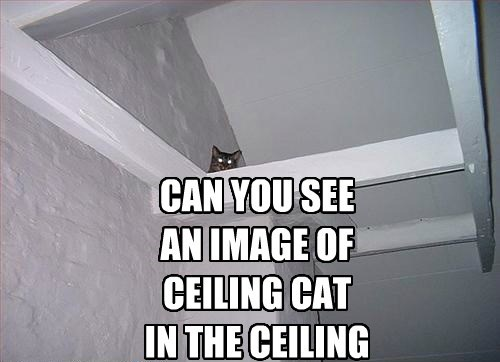 CAN YOU SEE AN IMAGE OF CEILING CAT IN THE CEILING