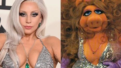 fashion-fail-lady-gaga-vs-miss-piggy