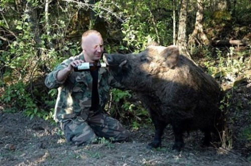 beer makes the boar less boring.