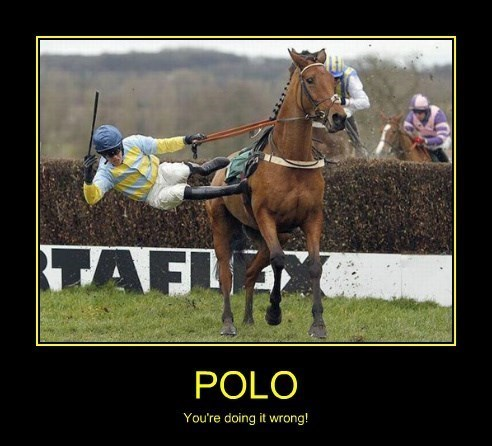 wtf awesome polo amazing funny - 8444661504