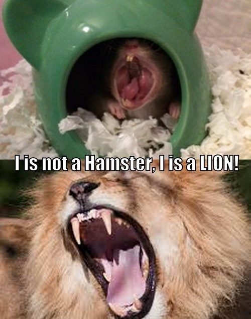 teeth,hamster,lion