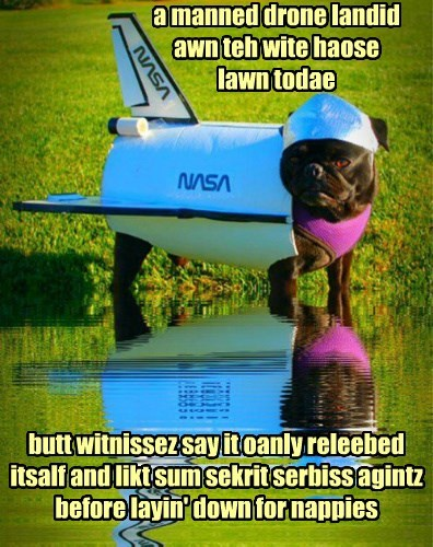 nasa dogs pug White house drone - 8445590016