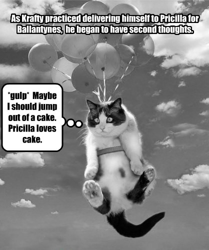 romance Balloons valentine Cats - 8445935616
