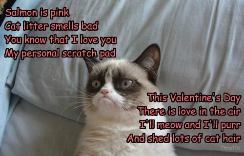 Grumpy Cat poem nope valentine Cats - 8446133248