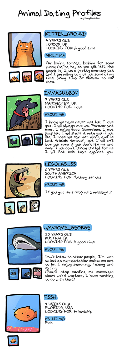funny-web-comics-what-if-animals-had-online-dating-profiles
