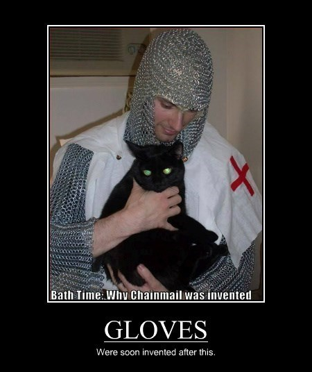 gloves bath time Cats funny
