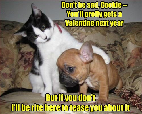 But if you don't I'll be rite here to tease you about it Don't be sad, Cookie -- You'll prolly gets a Valentine next year