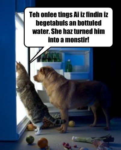 dogs refrigerator noms Cats monster