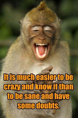 It is much easier to be crazy and know it than to be sane and have some doubts.