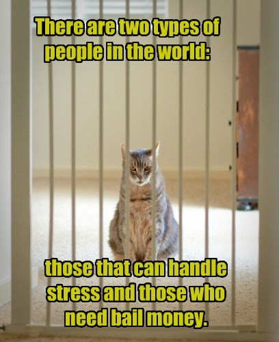 There are two types of people in the world: those that can handle stress and those who need bail money.