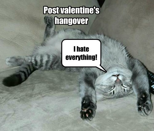 I hate everything! Post valentine's hangover