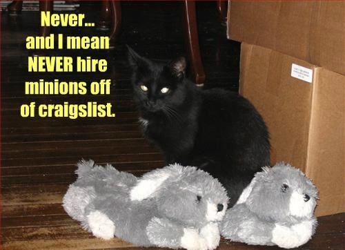 basement cat,minions,Cats,black cat,monty python,captions