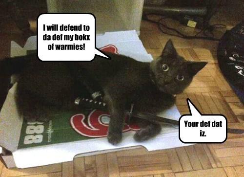 defend cats.box - 8447535104