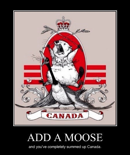 Poster - CANADA ADD A MOOSE and you've completely summed up Canada.