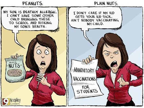 funny-web-comics-peanuts-vs-plain-nuts