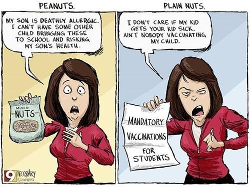 funny-web-comics-peanuts-vs-plain-nuts