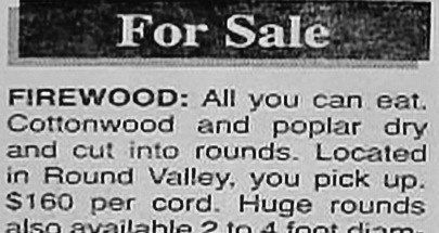 funny-newspaper-fails-for-sale-firewood