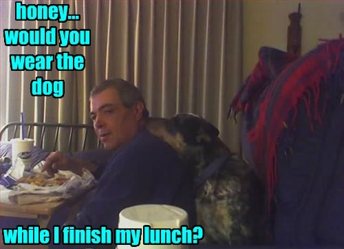 honey... would you wear the dog while I finish my lunch?