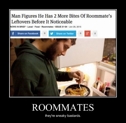 sneaky roommates funny - 8448323840