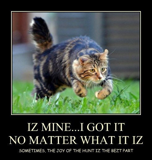 IZ MINE...I GOT IT NO MATTER WHAT IT IZ SOMETIMES, THE JOY OF THE HUNT IZ THE BEZT PART
