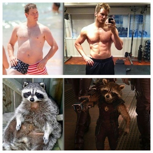 superheroes-guardians-of-the-galaxy-rocket-raccon-weight-loss-transformation