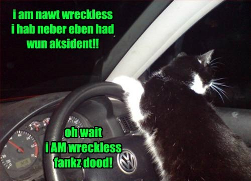 cat accident never wreckless caption - 8449621504