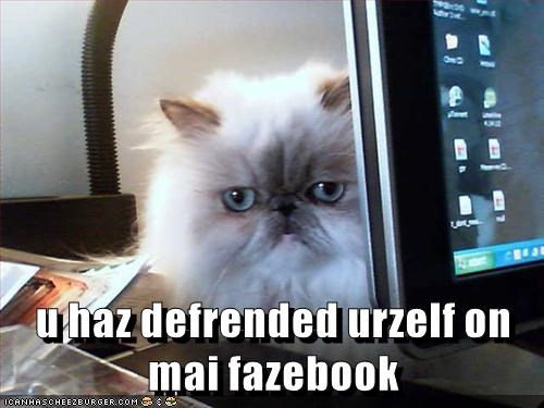 animals i dont care facebook unfriend Cats - 8449684480
