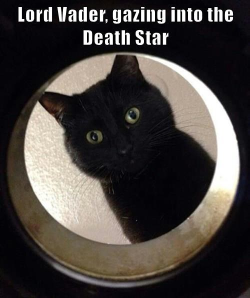 Lord Vader, gazing into the Death Star