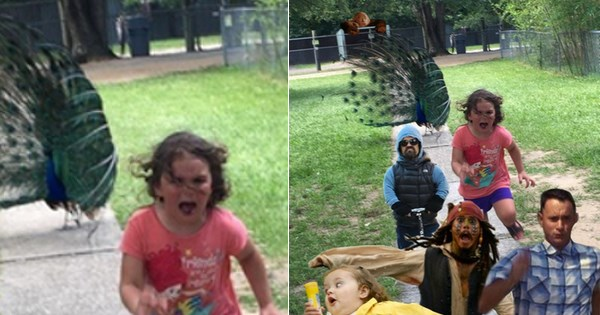 petting zoo,list,kids,chase,photoshop,parenting,photoshop battle,peacock