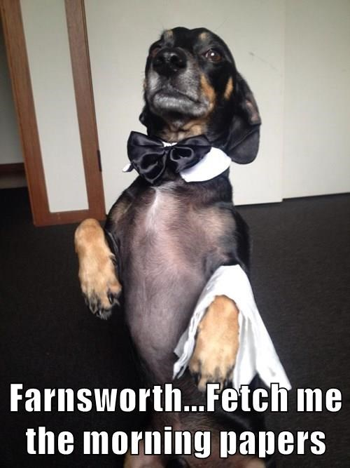 Farnsworth...Fetch me the morning papers