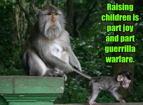 captions parenting monkey funny - 8450994432