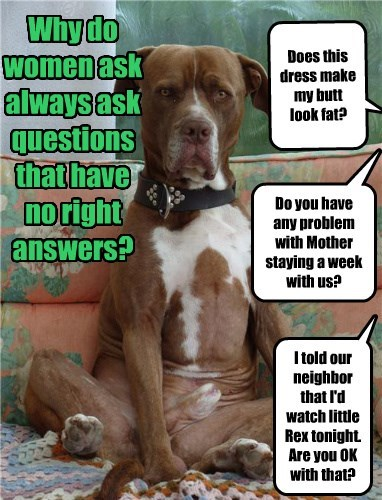 dogs caption questions women - 8450996992