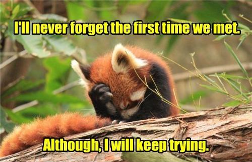 fox facepalm - 8450997760