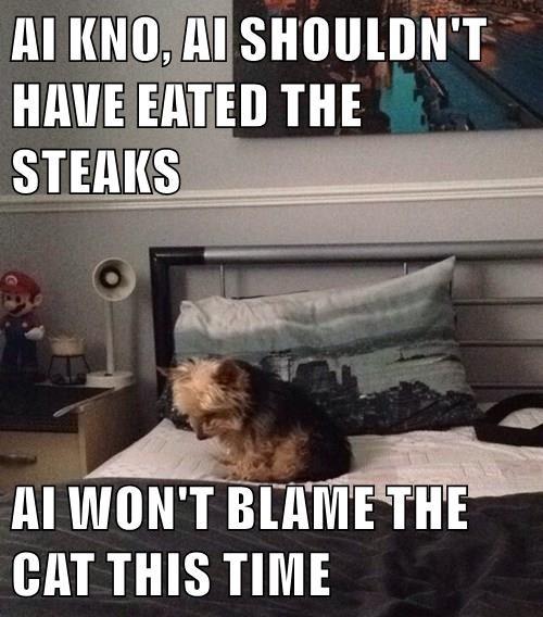animals dogs eaten steaks caption - 8451132672