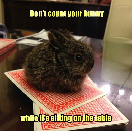 Don't count your bunny while it's sitting on the table