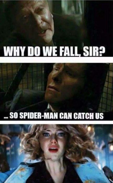 superheroes-spiderman-marvel-gwen-stacy-master-bruce-batman
