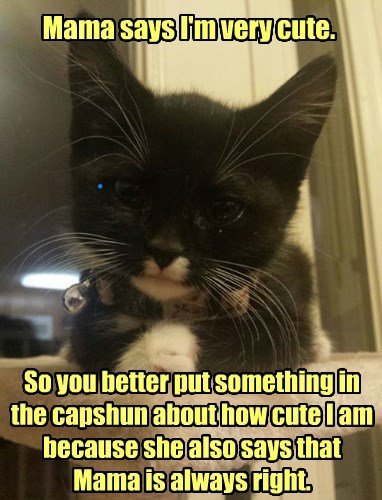 Yep, Cute As A Bug's Ear!