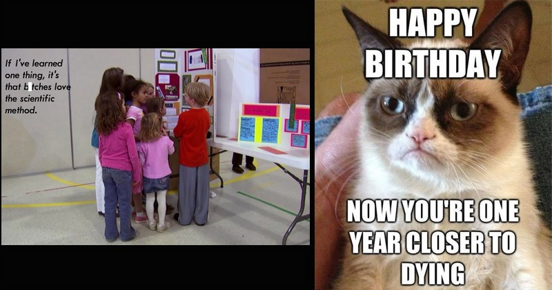 Grumpy Cat gifs funny memes classic memes bad luck brian overly attached girlfriend og memes - 8451845