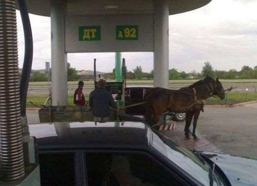 funny-fail-pics-russia-gas-station-horses