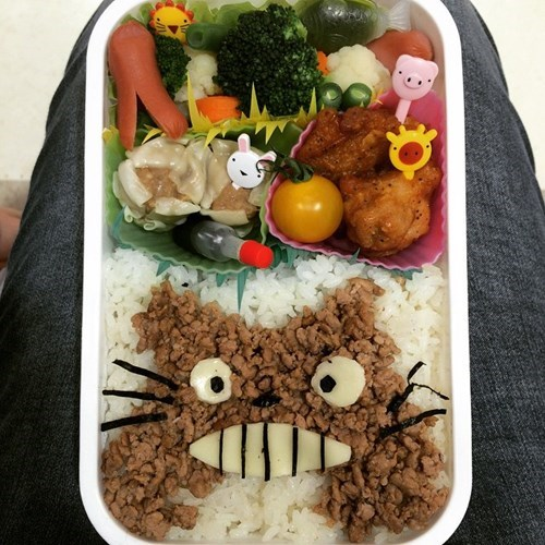 epic-win-pics-lunch-bento-totoro