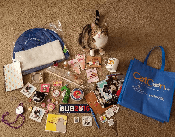 LA,los angeles,swag,convention,catcon,Cats