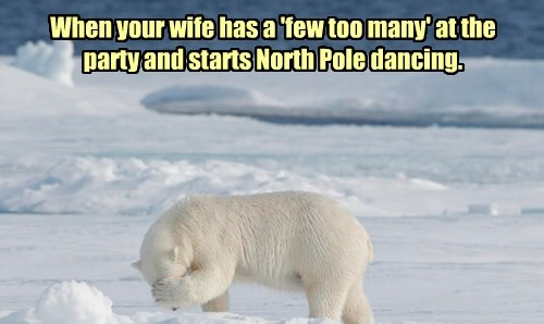 Polar bear - When your wife has a tew too many'atthe party and starts North Poledancing.