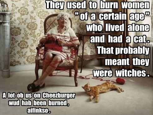 lolcats,crazy cat lady,witch,Cats