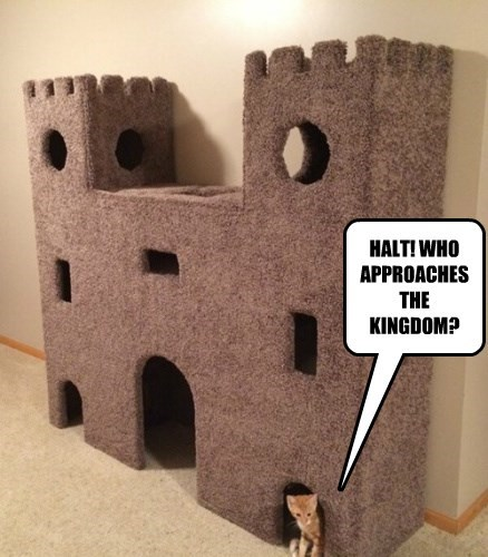 HALT! WHO APPROACHES THE KINGDOM?