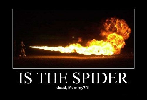 dead Kill It With Fire funny spider