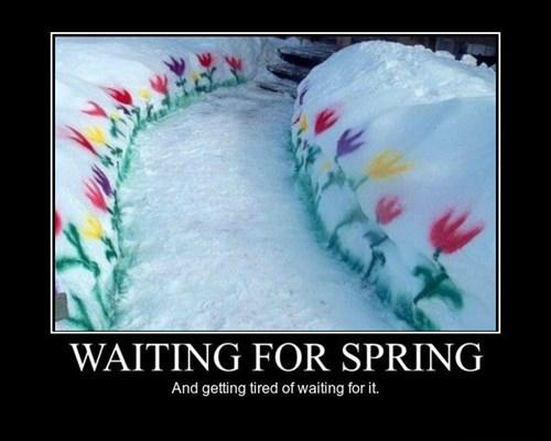 depressing snow funny spring winter - 8453414400