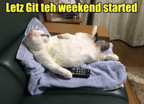 crazy weekend Cats - 8454103296